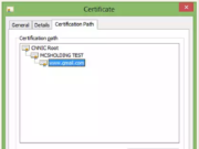 gmail fake ssl cert CNNIC