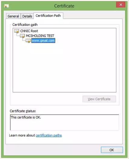 gmail fake ssl cert CNNIC